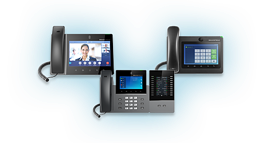 IP Video Telephony