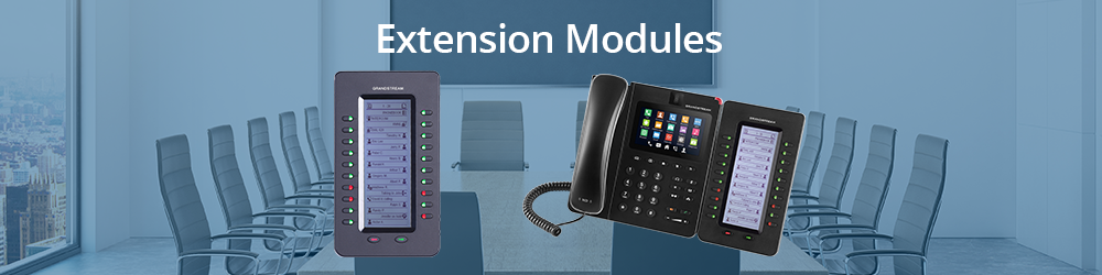 IP Telephony-Extension Modules